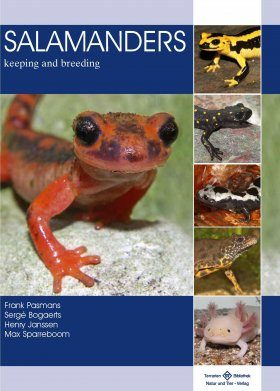 Salamanders: Keeping and Breeding
