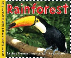 Rainforest: Explore the Exciting World of the Rainforest!