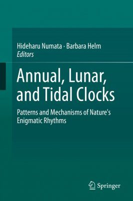 Annual, Lunar and Tidal Clocks
