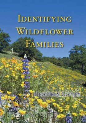 Identifying Wildflower Families