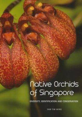 Native Orchids of Singapore