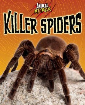 Animal Attack: Killer Spiders