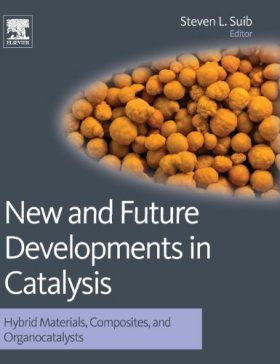 New and Future Developments in Catalysis: Hybrid Materials, Composites, and Organocatalysts