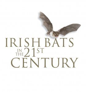Irish Bats in the 21st Century