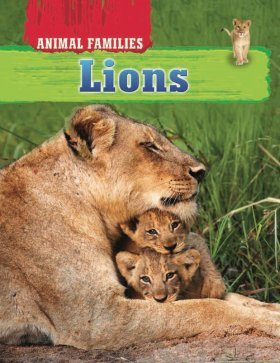 Animal Families: Lions