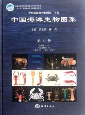 An Illustrated Guide to Species in China's Seas, Volume 6 [Chinese]