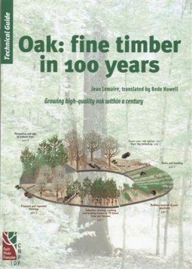 Oak: Fine Timber in 100 Years