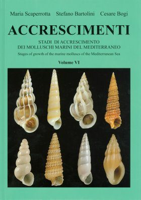 Accrescimenti, Volume 6 [English / Italian]