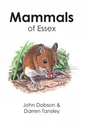 Mammals of Essex