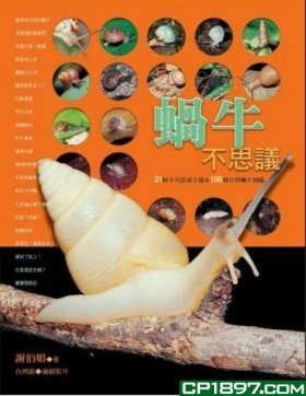The Amazing Snails [Chinese]