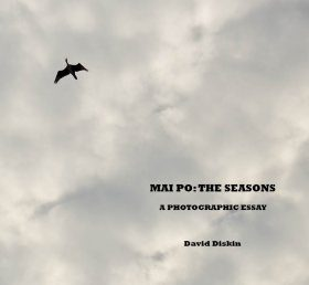 Mai Po: The Seasons - A Photographic Essay
