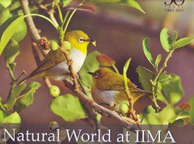 Natural World at IIMA
