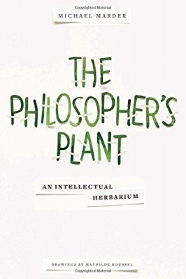 The Philosopher's Plant