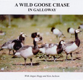 A Wild Goose Chase in Galloway
