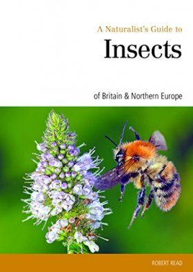 A Naturalist's Guide to Insects of Britain & Northern Europe