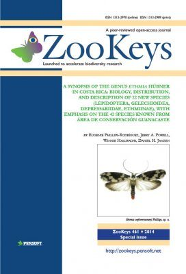 ZooKeys 461: A Synopsis of the Genus Ethmia Hübner in Costa Rica