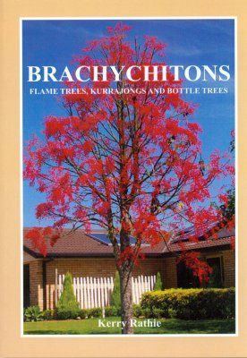 Brachychitons: Flame Trees, Kurrajongs and Bottle Trees