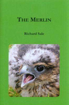 The Merlin