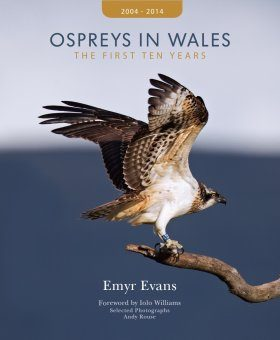 Ospreys in Wales