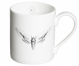 Privet Hawk Moth Mug