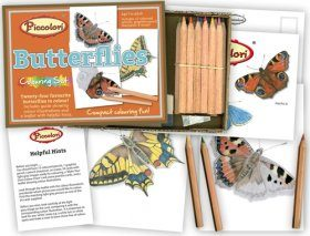 Butterflies Colouring Set