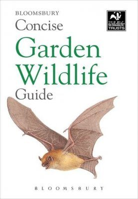 Bloomsbury Concise Garden Wildlife Guide
