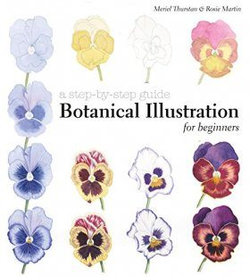 Botanical Illustration for Beginners