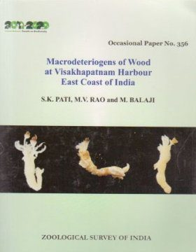 Macrodeteriogens of Wood at Visakhapatnam Harbour, East Coast of India