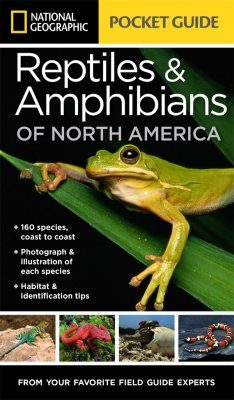 Reptiles & Amphibians of North America