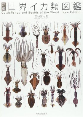 Cuttlefishes and Squids of the World [English / Japanese]