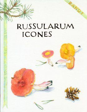 Russularum Icones: Eine Täublingsikonografie (2-Volume Set) [German / French]