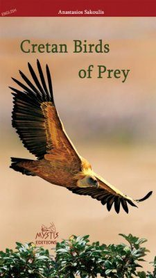 Cretan Birds of Prey