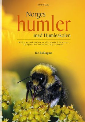 Norges Humler [The Bumblebees of Norway]