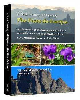 The Picos de Europa, Part 2: Mountains, Rivers and Rocky Places