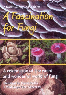 A Fascination for Fungi: A Celebration of the Weird and Wonderful World of Fungi (Region 2 / B)
