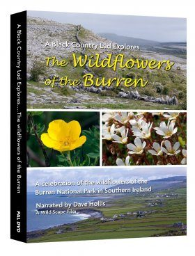 The Wildflowers of the Burren (Region 2)