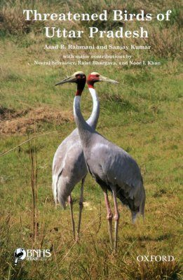 Threatened Birds of Uttar Pradesh