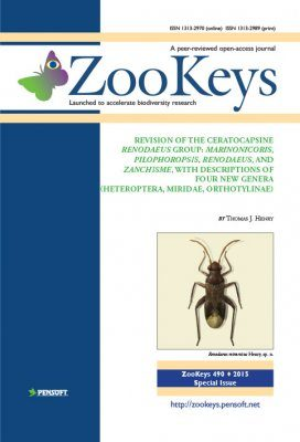 ZooKeys 490: Revision of the Ceratocapsine Renodaeus Group: Marinonicoris, Pilophoropsis, Renodaeus, and Zanchisme, with Descriptions of Four New Genera (Heteroptera, Miridae, Orthotylinae)