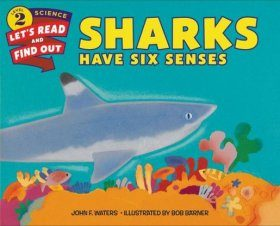 Sharks Have Six Senses