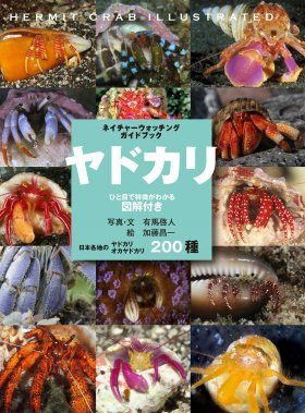 200 Hermit Crabs Illustrated [Japanese]