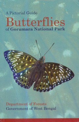 A Pictorial Guide Butterflies of Gorumara National Park
