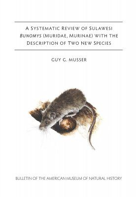 A Systemic Review of Sulawesi Bunomys (Muridae, Murinae) With the Description of Two New Species