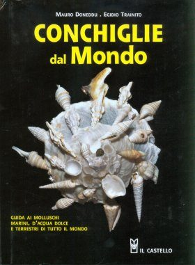 Conchiglie dal Mondo [Shells of the World]