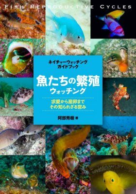 Fish Reproductive Cycles [Japanese]