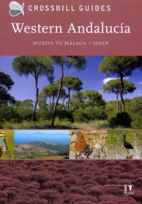 Crossbill Guide: Wstern Andalucía