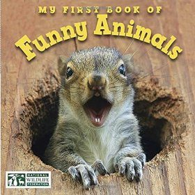 My First Book of Funny Animals
