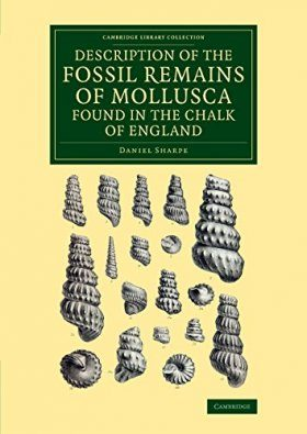 Description of the Fossil Remains of Mollusca Found in the Chalk of England