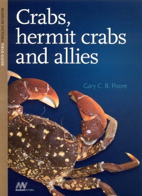 Crabs, Hermit Crabs and Allies