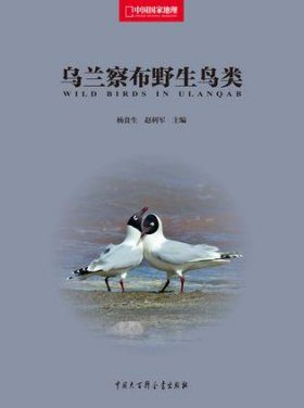 Wild Birds in Ulanqab [Chinese]