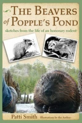 Beavers of Popple's Pond